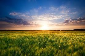 light on horizon